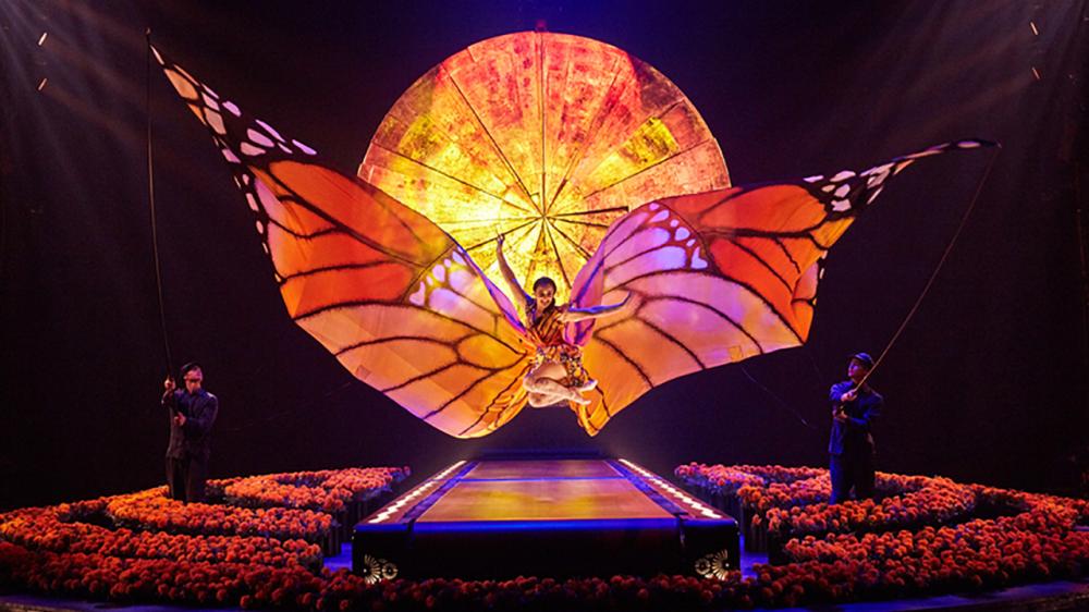 Cirque du soleil's luzia at the royal albert hall